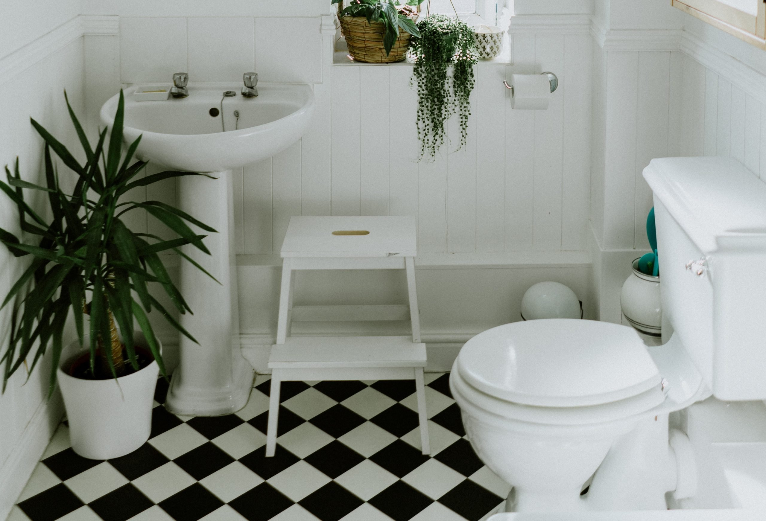 The 10 Best Compact Toilets for Small Bathrooms