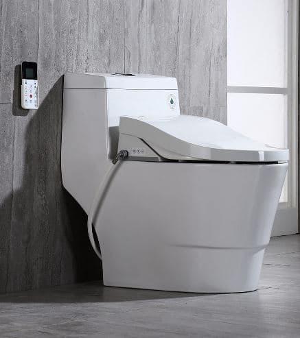 bidet-toilet-combo