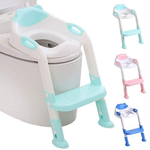best-potty-training-seat-with-a-ladder
