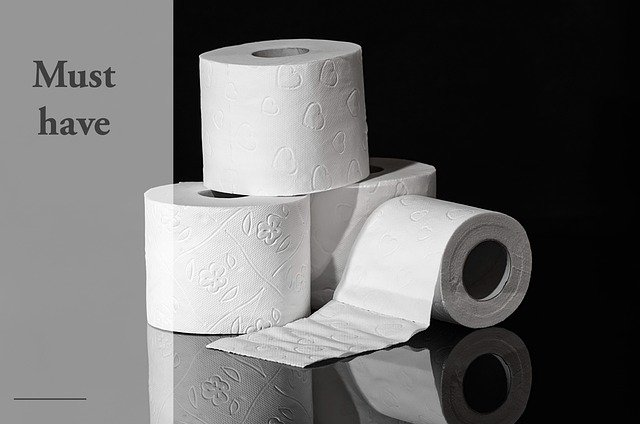 Rough Things People Used Before Toilet Paper Was Invented